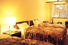 白馬パークホテル 部屋1