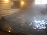 グリーンプラザ白馬 湯プラザ 奥白馬温泉2